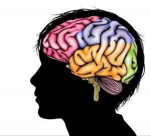 Suzanne Zeedyk - Brain Development - Trauma-0554-wBrainDev-child-w